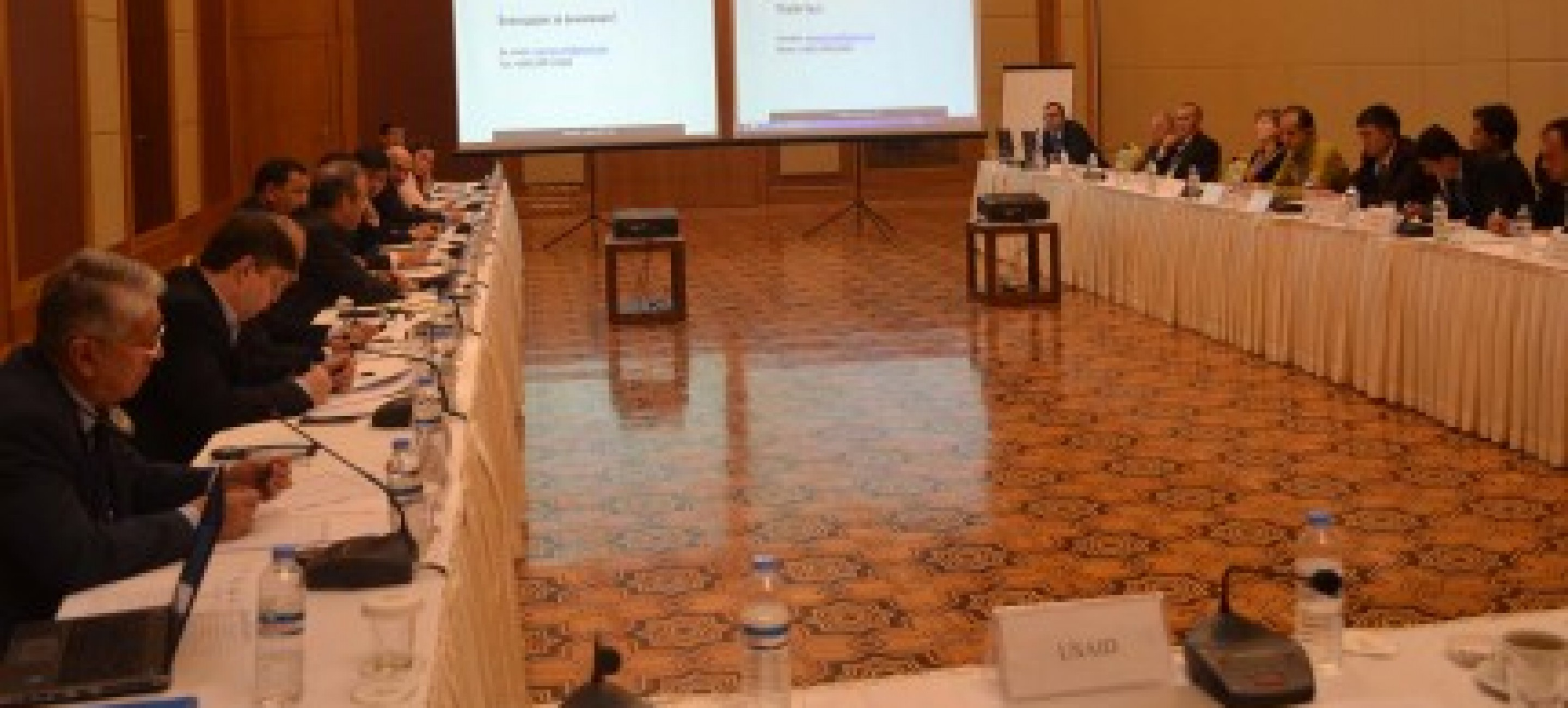 Meeting of the Task Force on Regional Energy Cooperation in Central and South Asia (RECA)